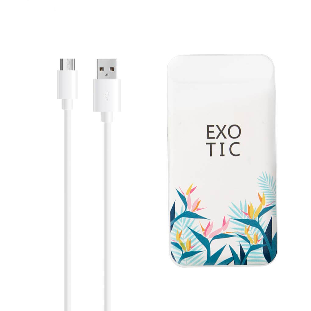 IN ONE Portable Power Bank